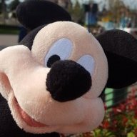 Jame (The Disney Guy)
